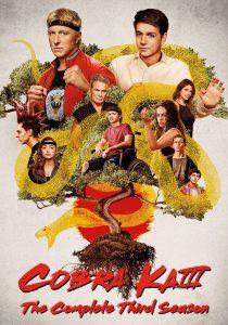 Cobra Kai (TV Series) S03 Custom HD Dual Latino 5.1 [02 Discos]