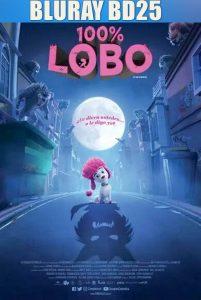 100% Wolf 2020 BD25 Latino