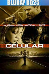 Cellular 2004 BD25 Latino