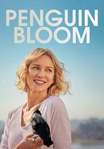 Penguin Bloom 2020 DVDR BD NTSC Sub
