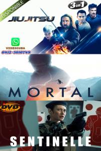 JIUJITSO-MORTAL-SENTINELLE