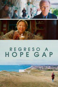 Hope Gap 2019 DVDR R2 PAL Spanish