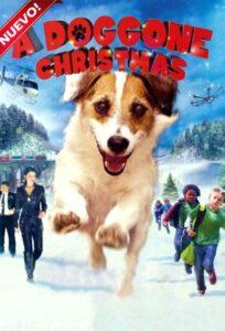A Doggone Christmas 2016 DVD R1 NTSC Latino