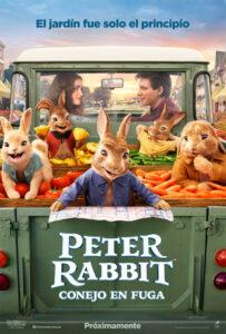 Peter Rabbit 2 The Runaway 2021 DVD R1 NTSC Latino